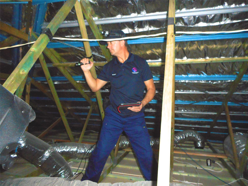pre purchase building inspection sunshine coast