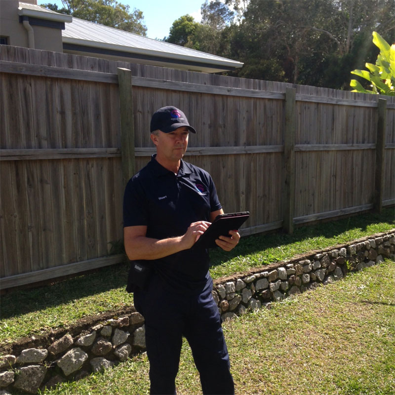 timber pest inspections sunshine coast
